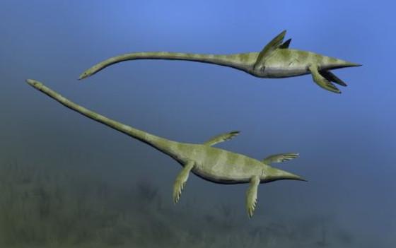 Elasmosarus