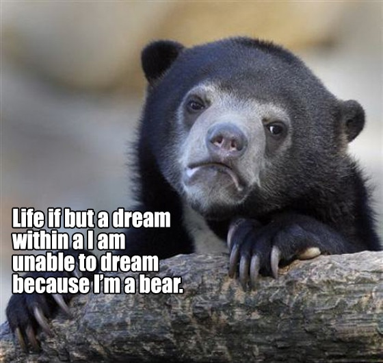Existential Bear 1