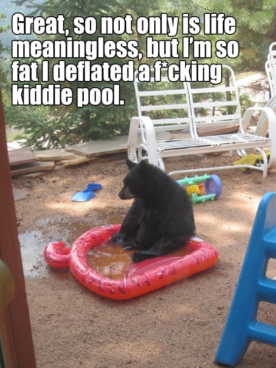 Existential Bear 4
