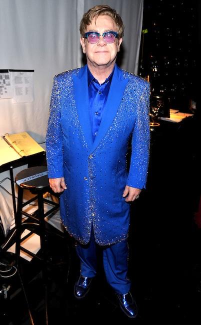 Sir Elton John, Emmy Awards, 2013, Audience
