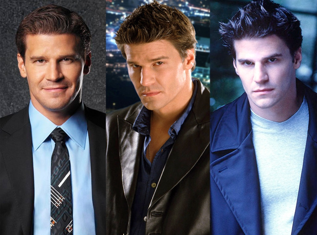 David Boreanaz, Multiple Hit Shows