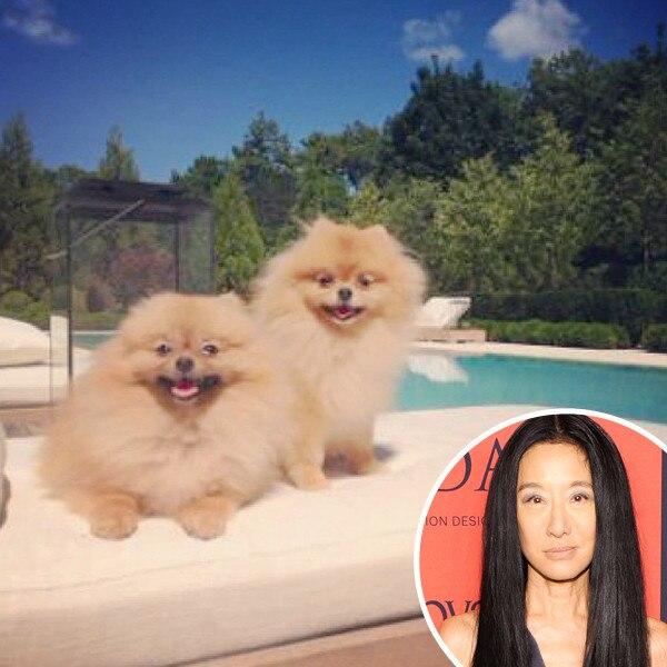 Vera Wang, Dog