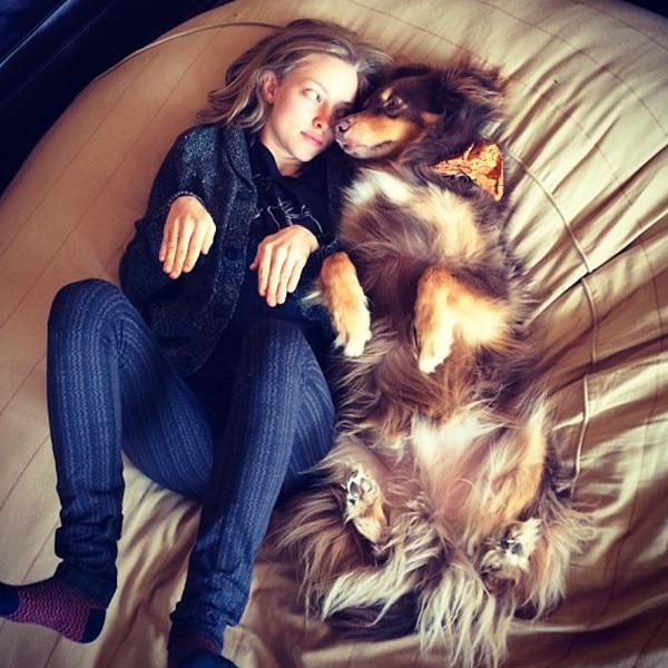 Amanda Seyfried, sleeping
