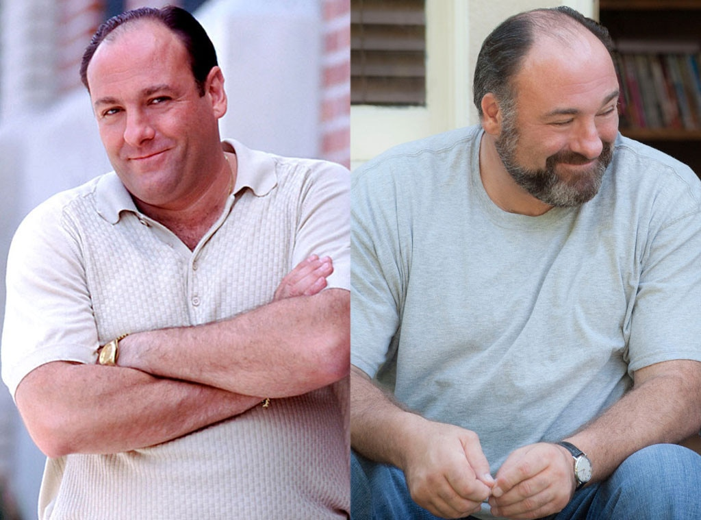 James Gandolfini, Sopranos, Enough Said