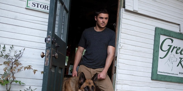 Zac Efron And A German Shepard From Zac Efron And Animals
