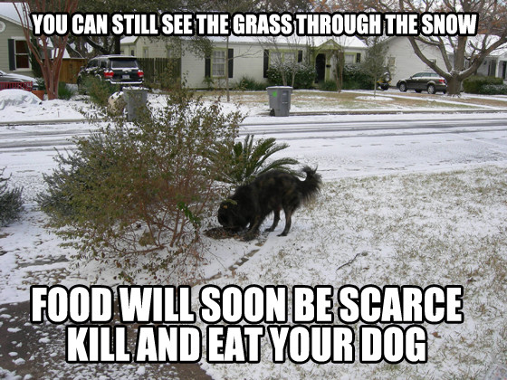 Photos From Austin S Snow Day Preparation Memes E Online