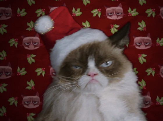 -  16. Grumpy Cat's Worst Christmas Ever : In 2014, someone at Lifetime thought it would be a great idea to create a Christmas film centered around Internet celebrity cat Grumpy Cat, voiced in the movie by  Aubrey Plaza , who befriends a young girl that she can communicate with.