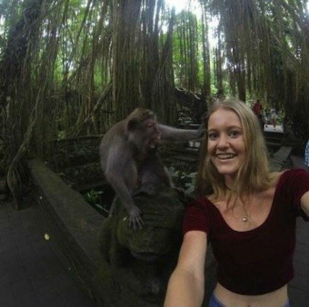 Omg Esta Selfie Termin Muy Mal  Fotos  E News-6609