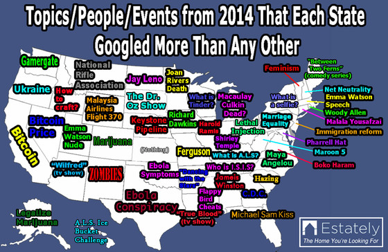 Google Searches in Each State