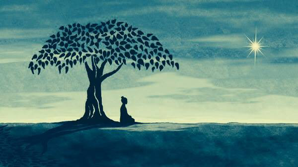 Megan Fox, Bodhi Tree, Facebook