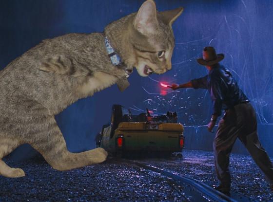 Jurassic Park Kitten