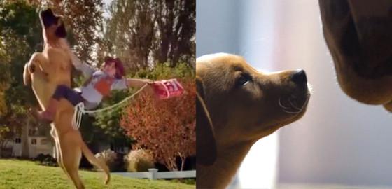 Doritos, Budweiser Super Bowl XLVIII Commercial
