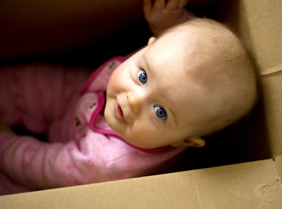 Baby Playing with Empty Boxes, Baby Gallery