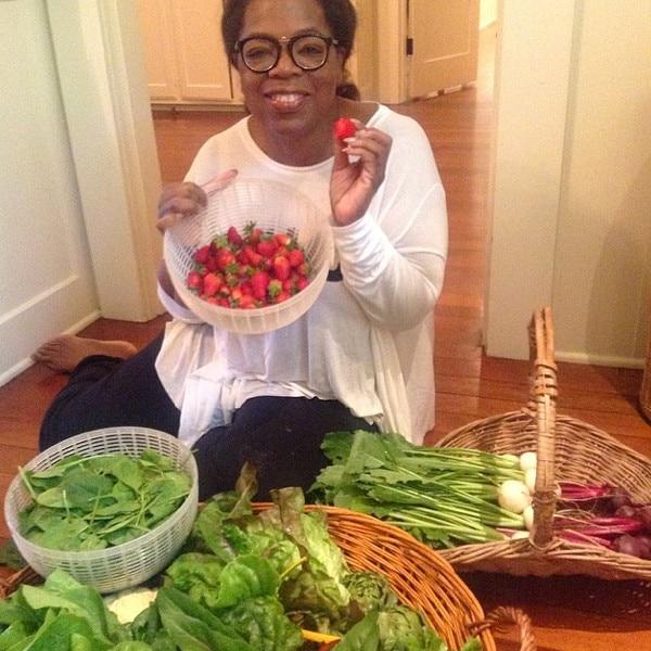 Oprah, Garden, Instagram