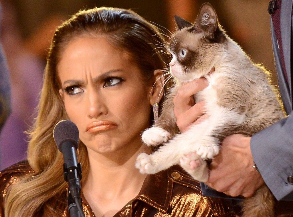 Jennifer Lopez, Grumpy Cat