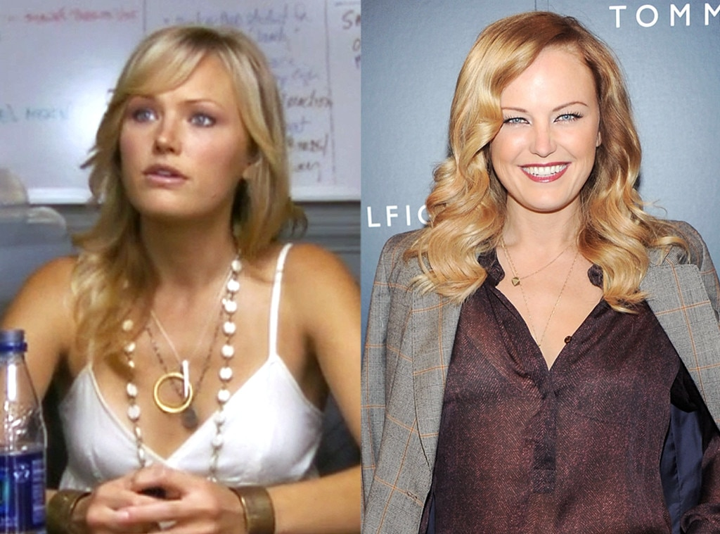 Malin Akerman, The Comeback, Where Are They Now