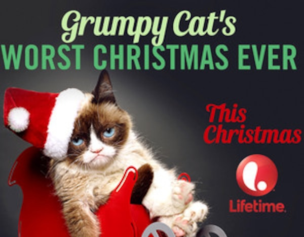 Grumpy Cat Christmas Memes.All The Memes Who Deserve A Lifetime Christmas Movie From