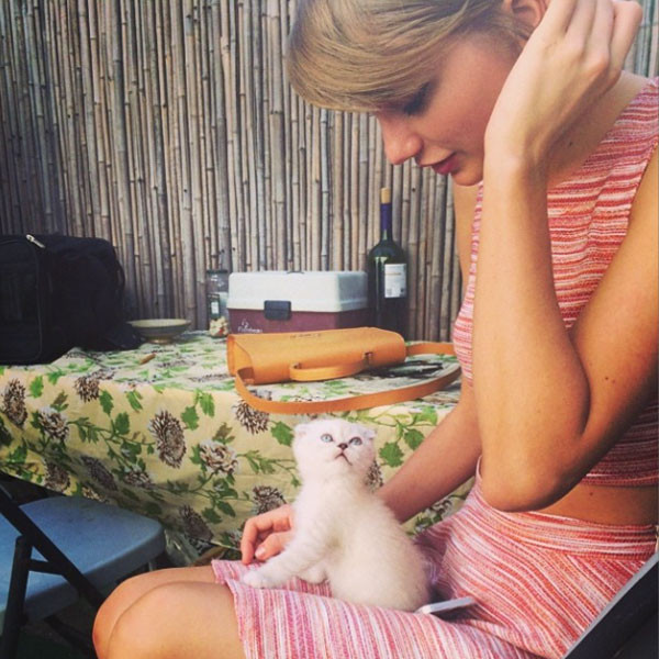 Taylor Swift, Olivia Benson, Instagram
