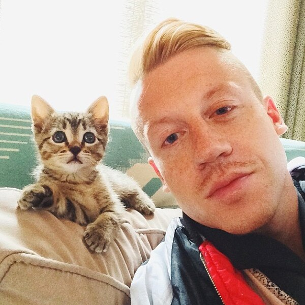 Celebs with Cats, Macklemore