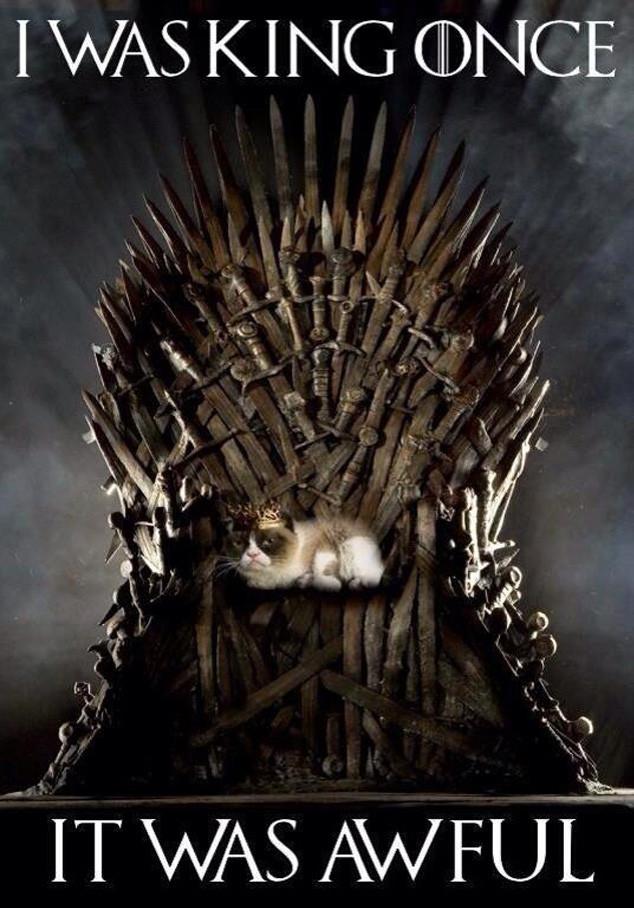 Grumpy cat, Game of Thrones Twitter