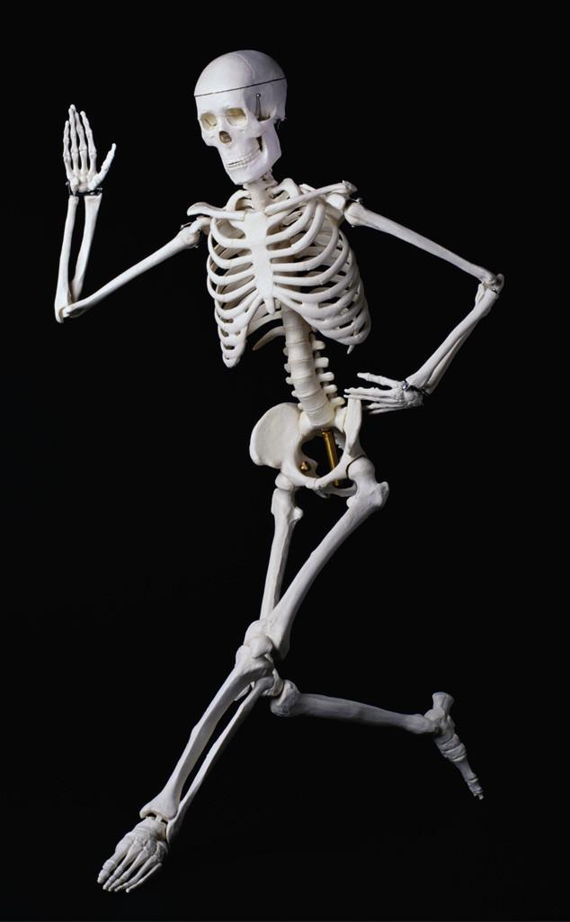 Body misconceptions, skeleton