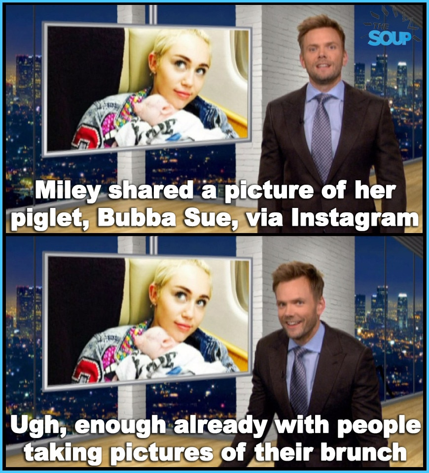 Miley's Pig from The Soup In Pictures