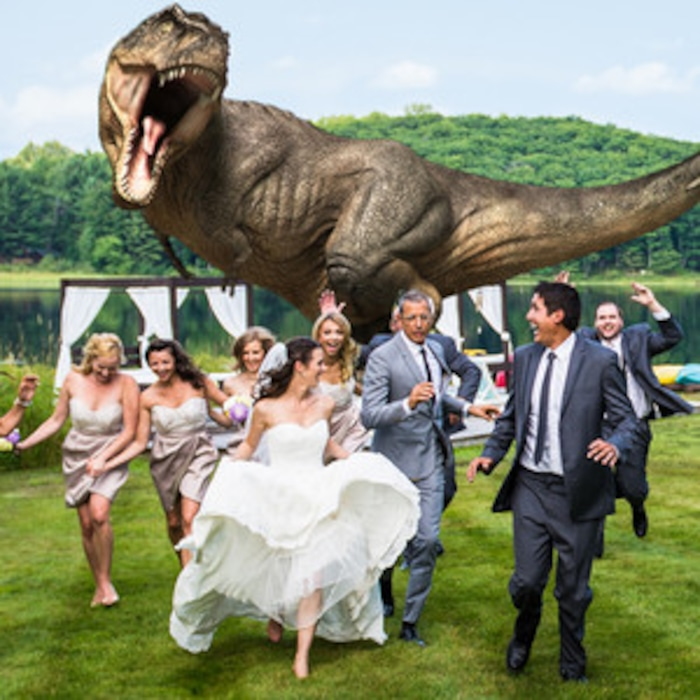 Jeff Goldblum Makes This Jurassic Park Themed Wedding Photo Extra