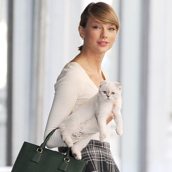 Taylor Swift, Olivia Benson