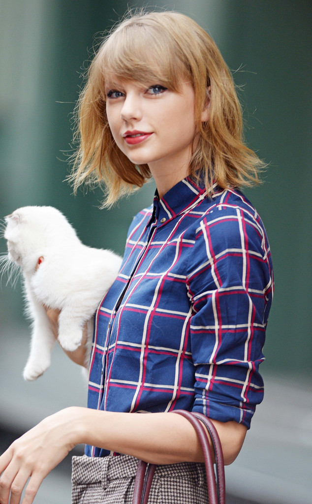 Taylor Swift Realizes Shes This Close To Turning Into Dr Evil, Right  E News-6718