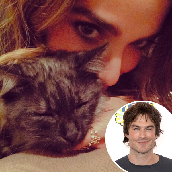 Nikki Reed, Ian Somerhalder, Cat, Instagram