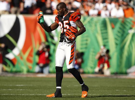 NFL Fines, Chad Ochocinco