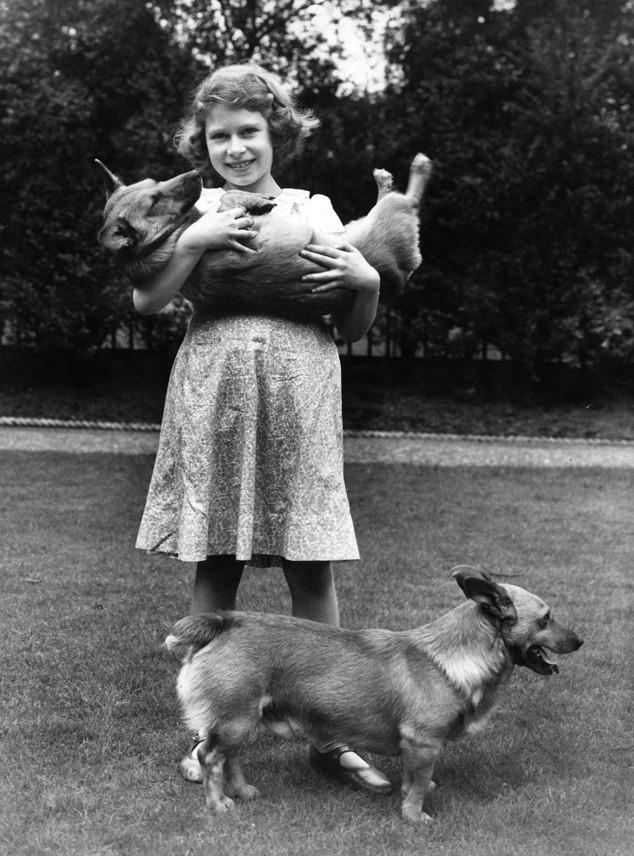 Queen Elizabeth II, Corgi