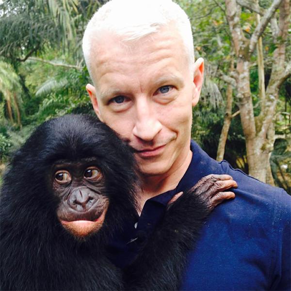 Anderson Cooper, Bonobo