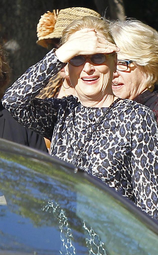 Meryl Streep ose le motif léopard pour le déjeuner des Oscars chez ... 2aa9531a4323