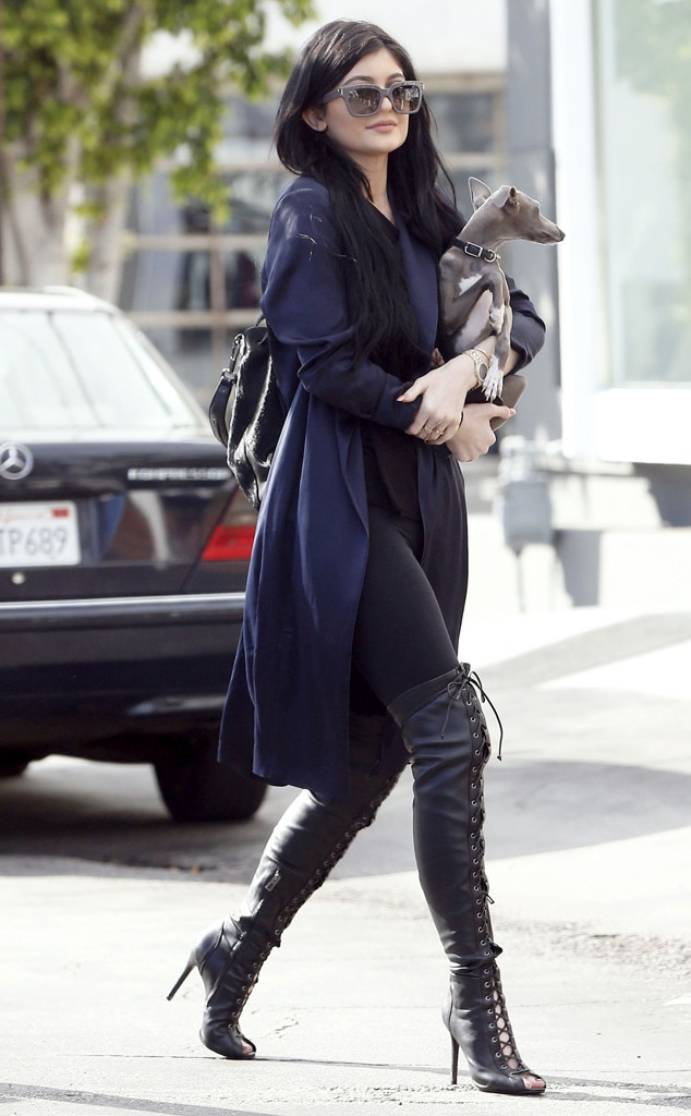 Puppy Love From Kylie Jenner S Street Style E News