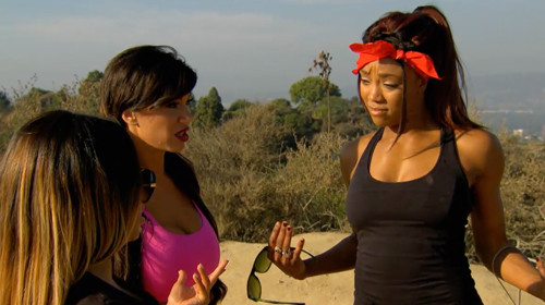 Wwe Diva Nikki Bella Interferes With Brie Bella And Daniel -8913