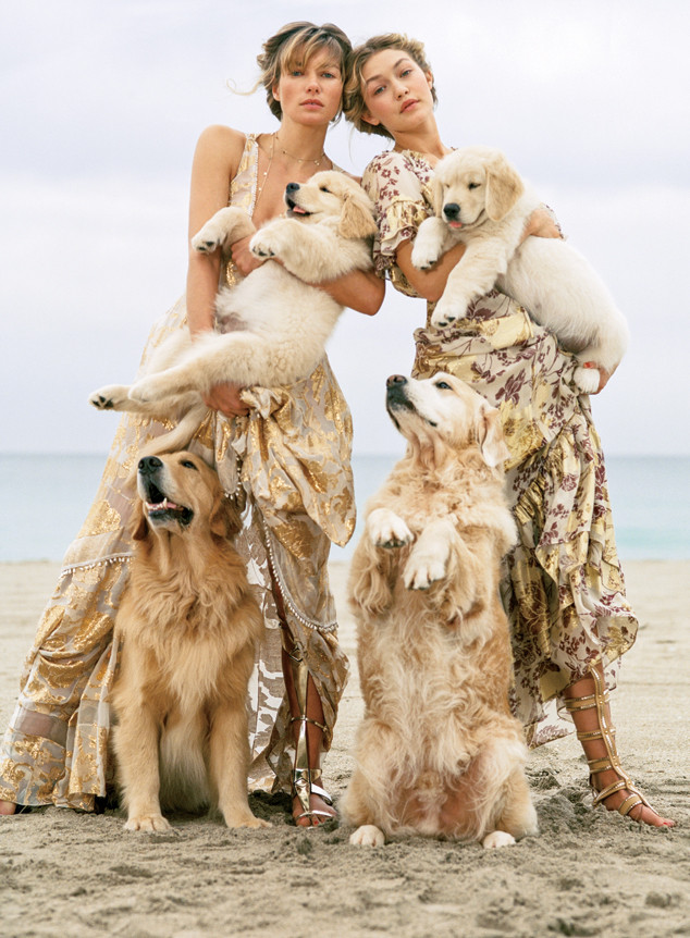 Vogue Puppies
