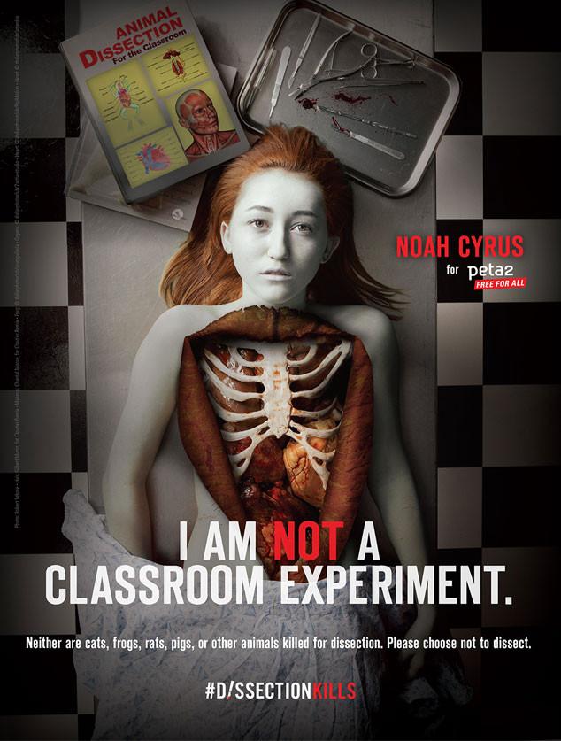 Noah Cyrus, PETA, Dissection Kills