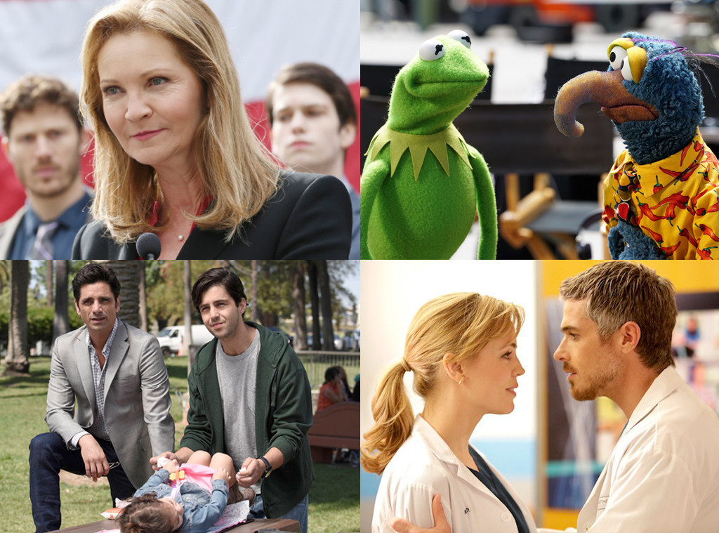 The Family, Muppets, Grandfathered, Heartbreaker