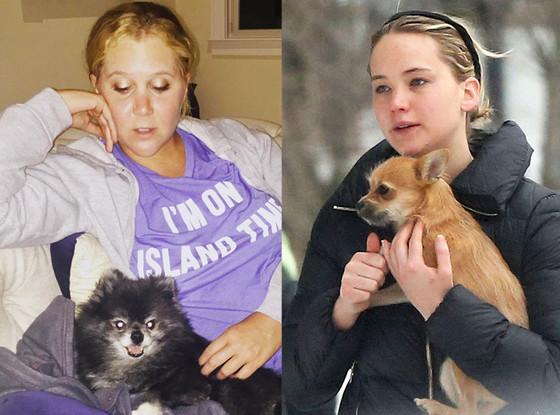 Jennifer Lawrence, Amy Schumer