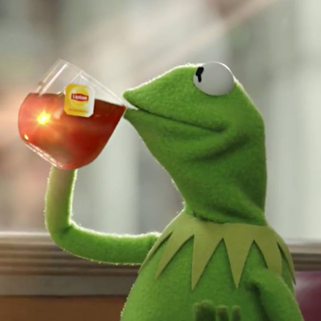 Good Morning America Just Called Kermit the Frog 'Tea Lizard' - E! Online -  AU