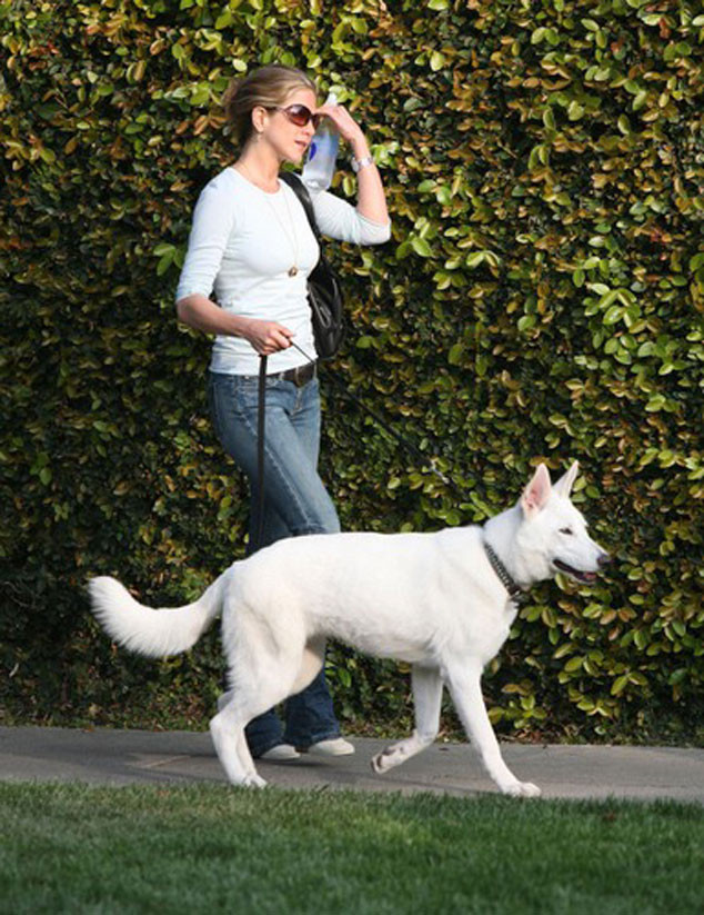 Jennifer Aniston, Dog