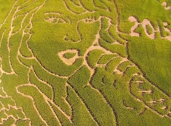 Taylor Swift, Corn Maze