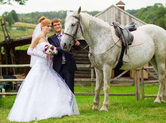 Married Couple, Wedding, Horse
