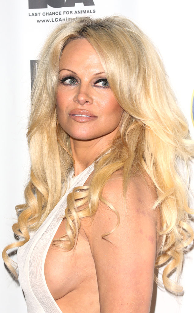 Pamela Anderson Natural Boobs