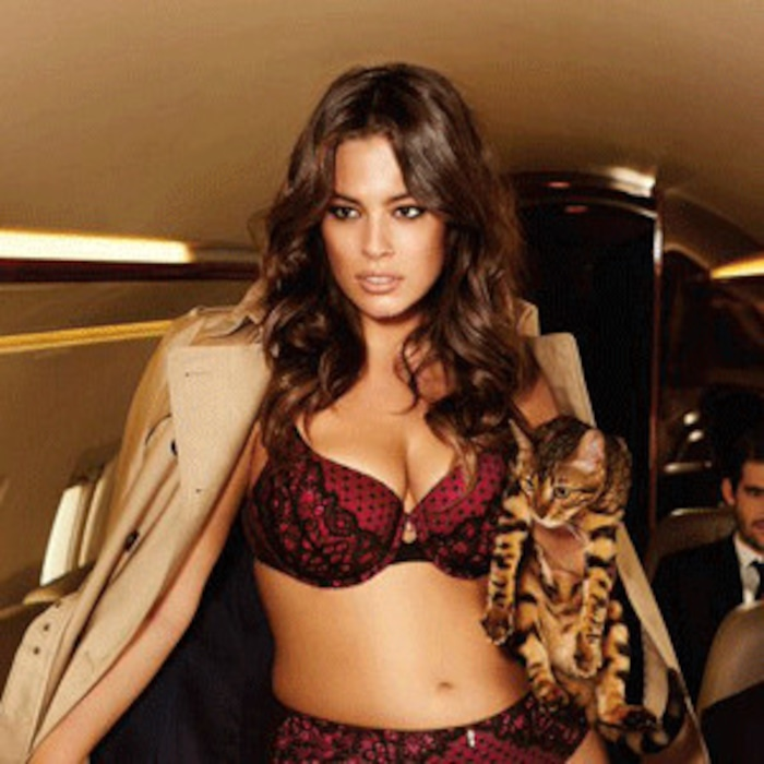885ab6e99 Ashley Graham Proudly Proclaims I Am Size Sexy In Purrfect New Lingerie  Campaign for Addition Elle