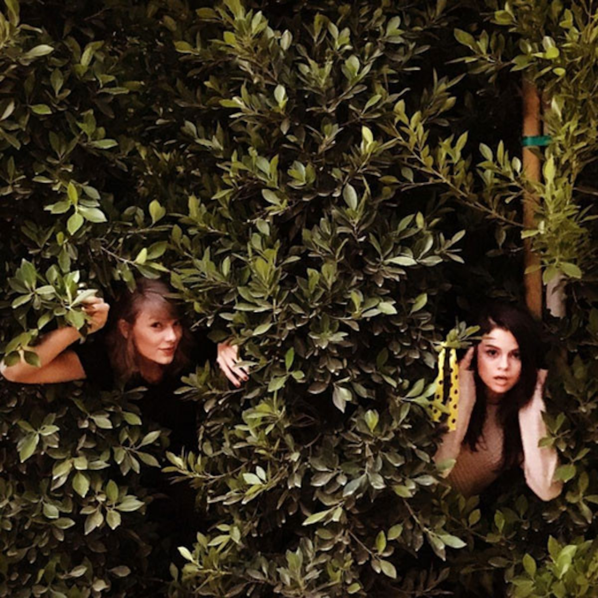 T Swift Selena Are Getting Out Of The Woods In Funny Ig Pics E Online