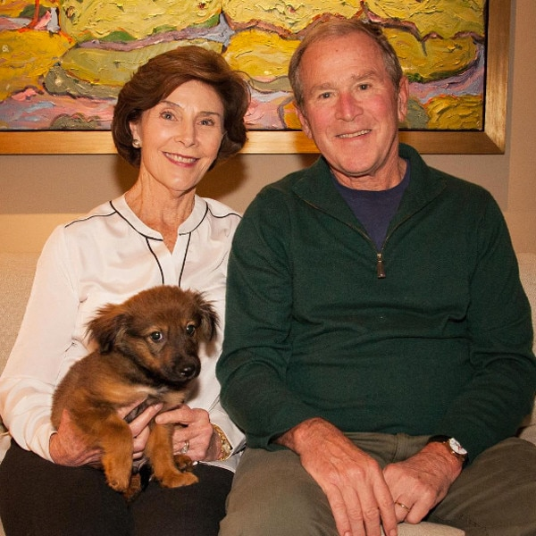Bush and laura George w