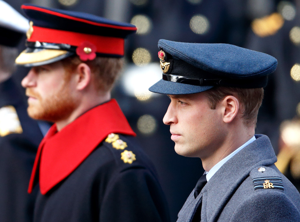 Prince Harry, Prince William, Duke of Cambridge