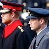 Prince Harry, Prince William, Duke of Cambridge